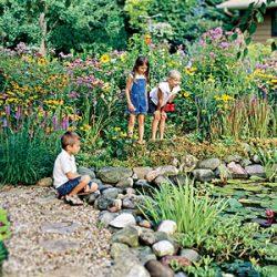 Water Gardens